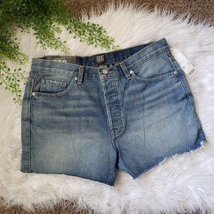 BDG Urban Outfitters Boyfriend Low Rise Shorts